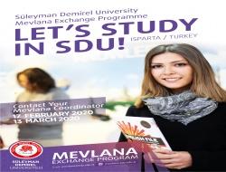Mevlana Poster